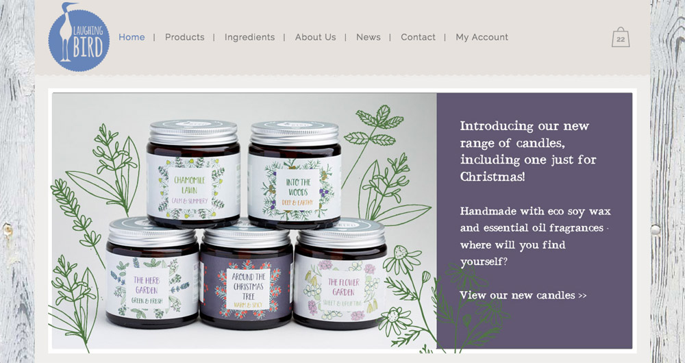 Laughing Bird website design by Sarah Callender Design